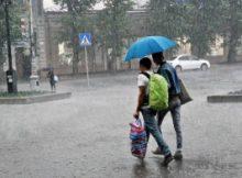 К концу недели в Хабаровском крае вновь ожидаются дожди 7
